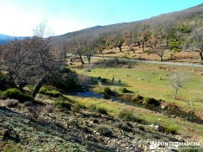 Pico Somosierra, Gran Recorrido GR88; viajes y excursiones; enero senderista;singles con niños madr